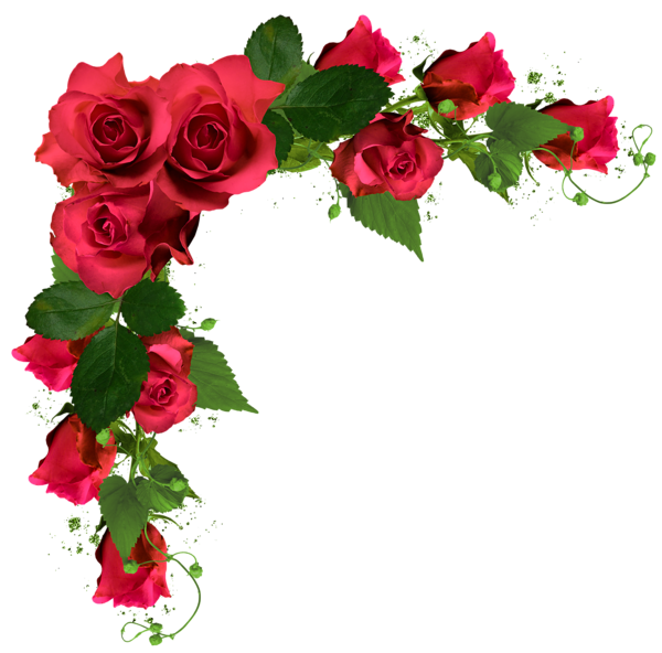 Beautiful Decor with Roses PNG Clipart Picture | flower border ...