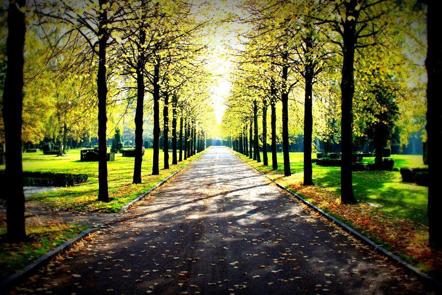 Shadowroad, Vestre Kirkegård