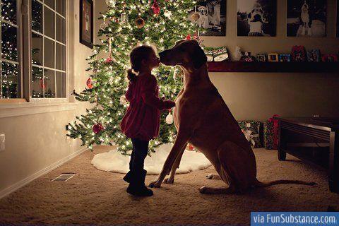 Christmas kiss - FunSubstance.com