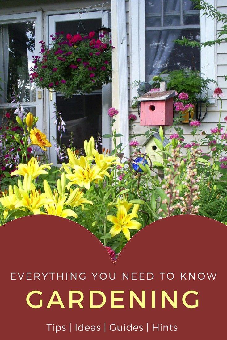 In home garden ideas  Hints And Advice For Growing An Organic Garden  Home Gardening