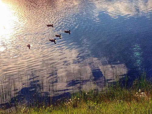 Lake Keselmä at Sallatunturi. | Flickr - Photo Sharing!