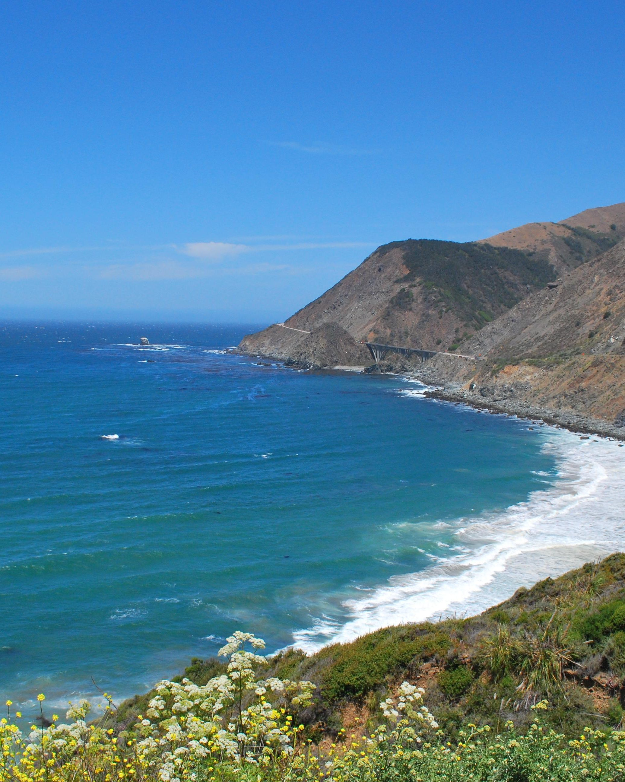 "{""user_id"": 17592392202846209, ""created_at_utc"": 1466634815, ""downvotes"": 0, ""is_community_pin"": true, ""score"": 9, ""details"": ""Somewhere off the PCH in Big Sur, CA [3872 x 2592] (OC)"", ""upvotes"": 9}"