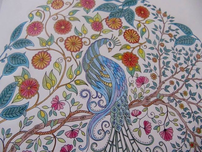 Johanna Basfords Secret Garden And Enchanted Forest Adult Colouring Books