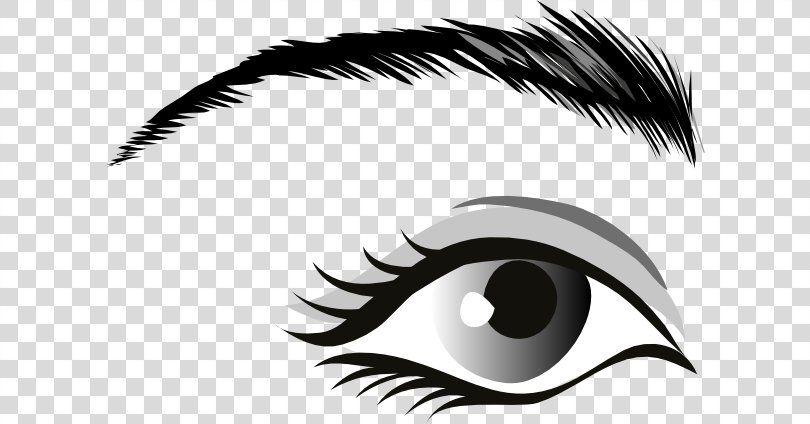 Human Eye Clip Art Eyes Outline Cliparts Png Watercolor Cartoon Flower Frame Heart Eye Outline Clip Art Human Eye