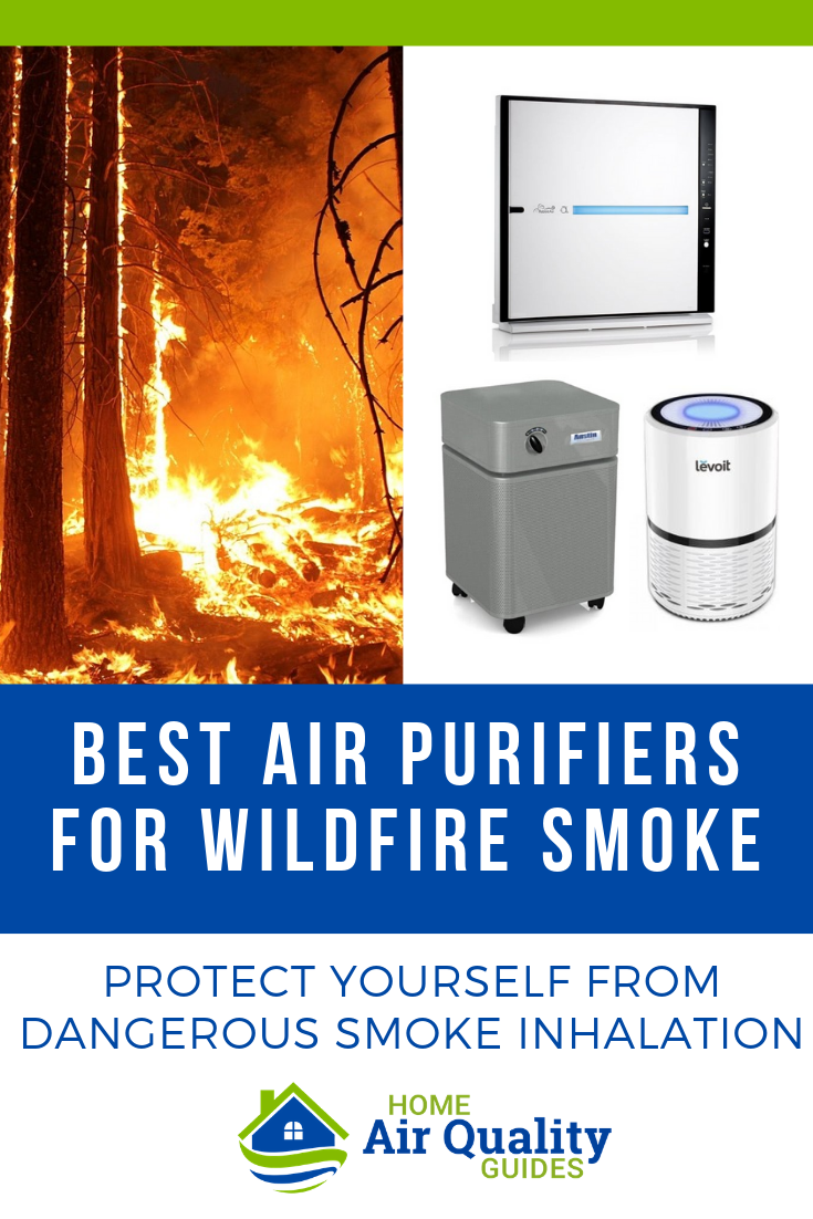 Best Air Purifier for Wildfire Smoke and Forest Fires