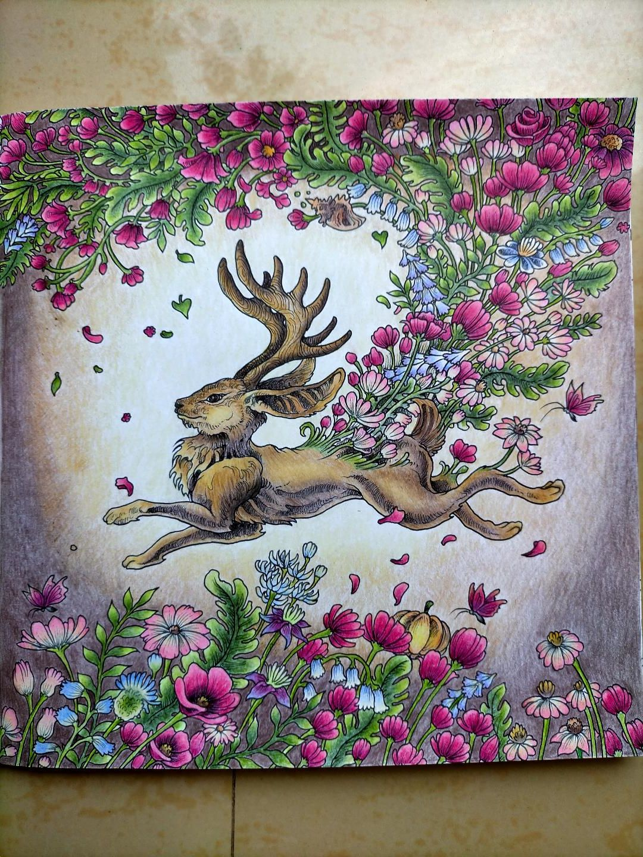 jackalope mythomorphia in 2020  jackalope art drawings