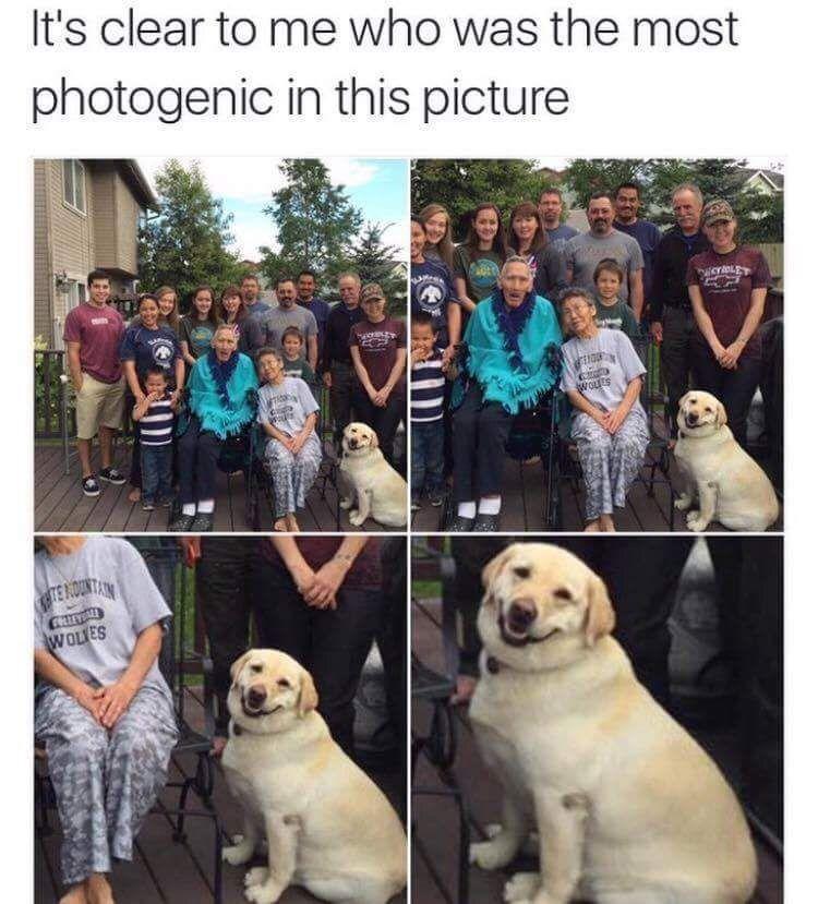 El más sonriente de la familia