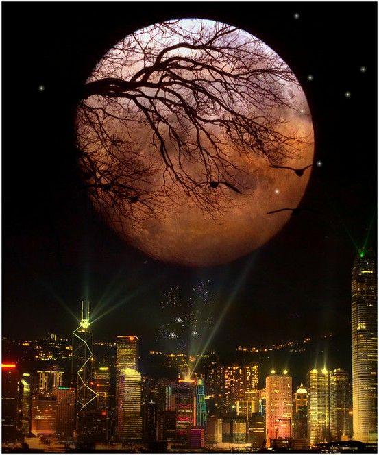 Moonlight And City Beautiful Moon Good Night Moon Moonlight