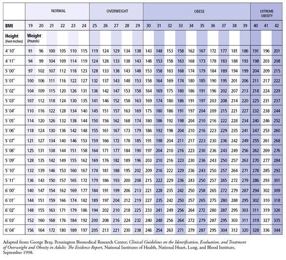 Bmi Body Mass Index Chart According To This I Am Overweight