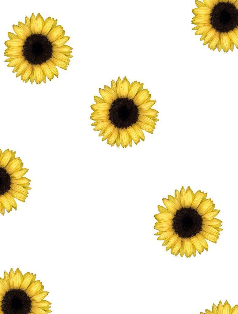 Sunflower Tumblr Wallpaper Mobile Jllsly Iphone Backgrounds Tumblr Sunflower Iphone Wallpaper Sunflowers Tumblr