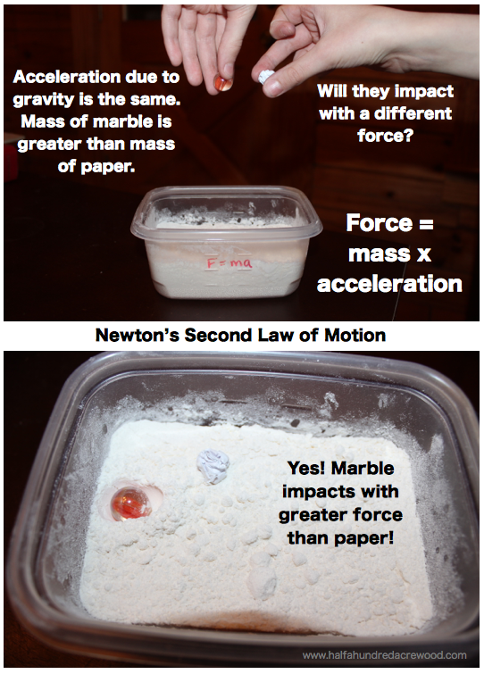 Newton S Laws Of Motion Simplified Half A Hundred Acre Wood Force And Motion Physical Science Activities Newtons Laws Of Motion