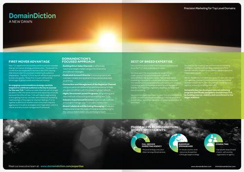 DomainDiction Services brochure spread