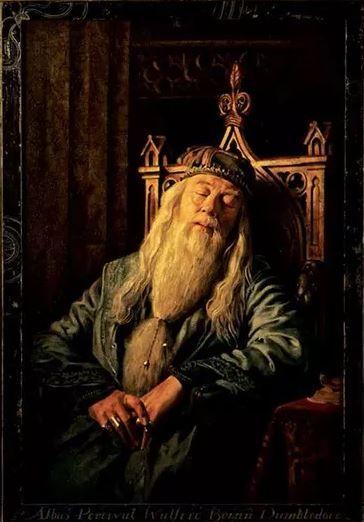 Portrait Harry Potter Portraits Harry Potter Dumbledore Albus Dumbledore Harry Potter