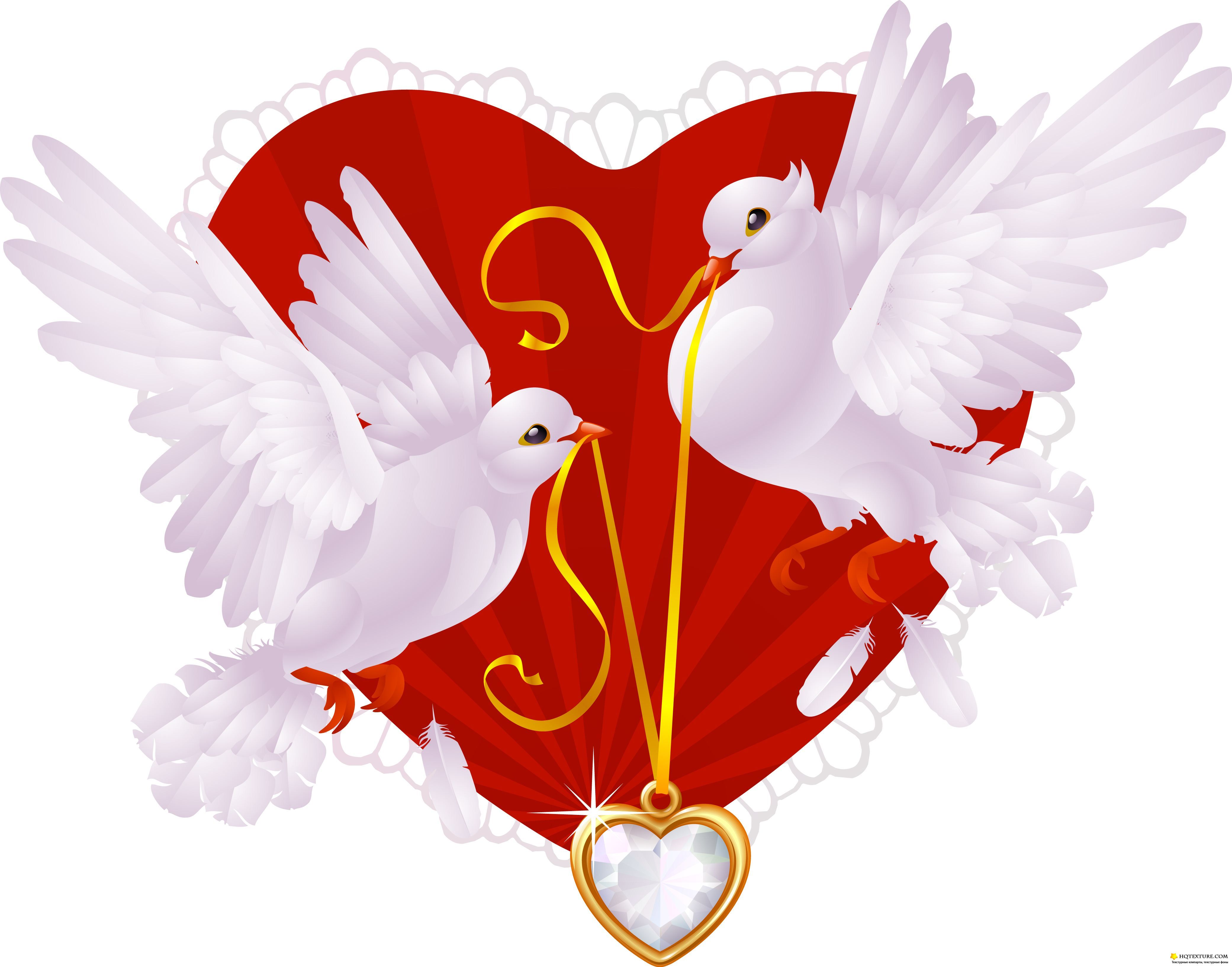Свадебные открытки с голубями, поздравление ирина открытка