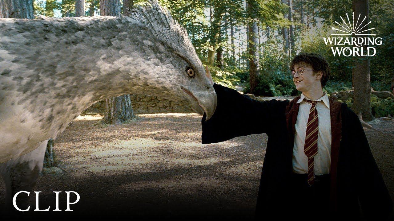 Meet Buckbeak Harry Potter and the Prisoner of the