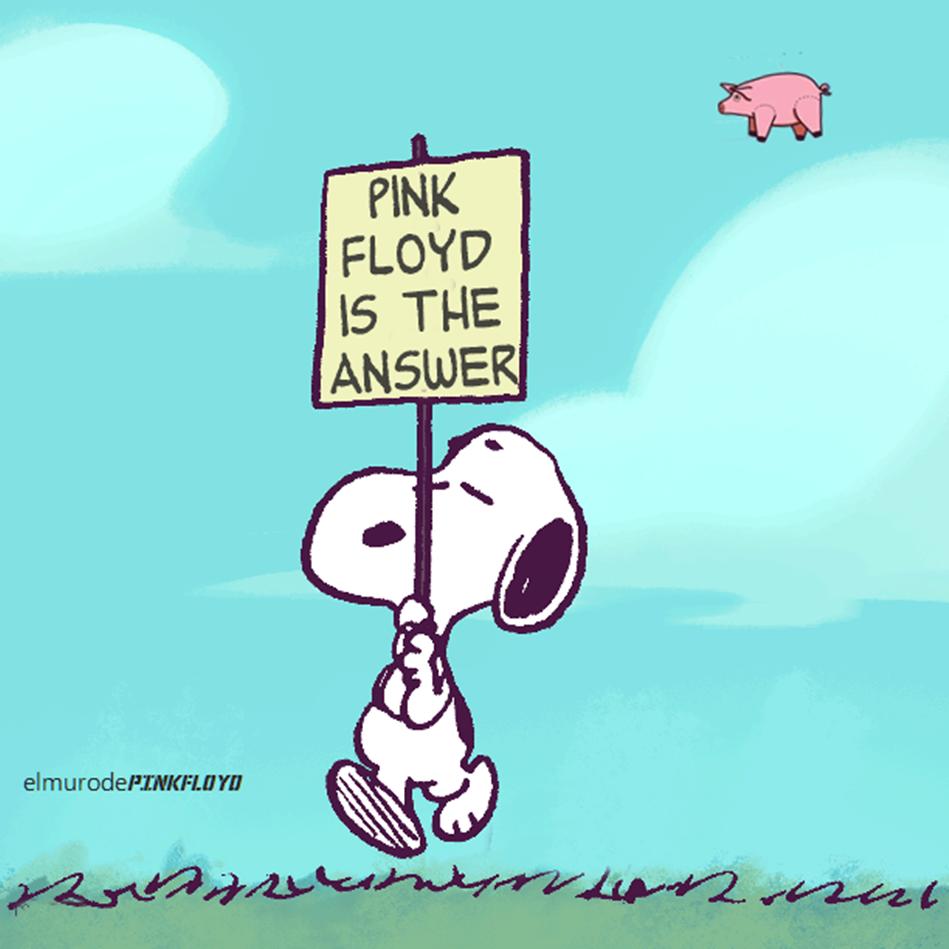 Snoopy Pink Floyd Is The Answer Pink floyd lyrics, Pink