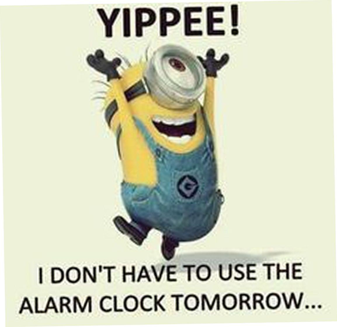 Today 20 Minion Quotes Minions Funny Funny Friday Memes Funny Minion Memes