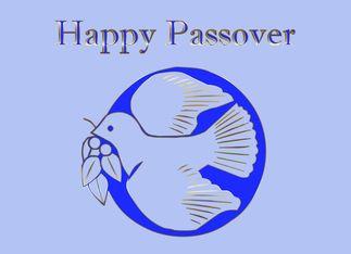 Pesach passover greetings shalom jewish hebrew star of david pesach passover greetings shalom jewish hebrew star of david greeting card m4hsunfo