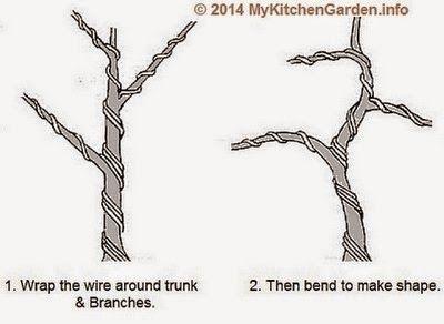 pin by foster ginger on gardening bonsai trees penzai rh pinterest com Bonsai Wiring Tips Bonsai Shapes