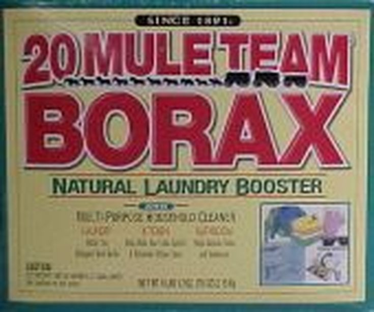 how to get rid of ants overnight without borax