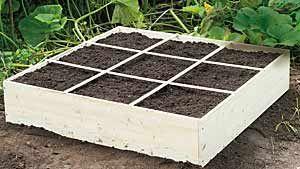 Gärtnern auf nur einem Quadratmeter #erhöhtepflanzbeete