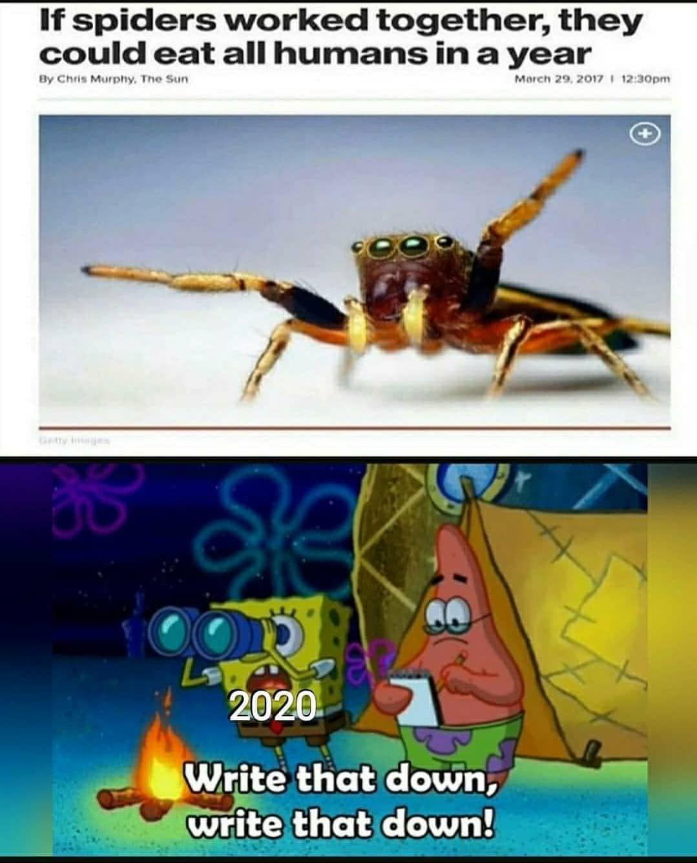 Pin on Garbage memes