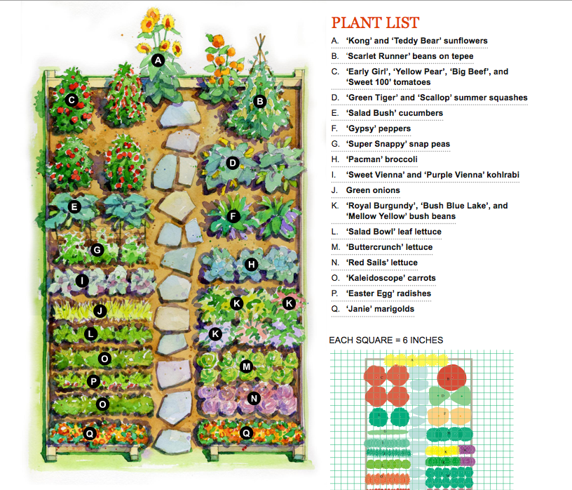 Bon Vegetable Garden Plan