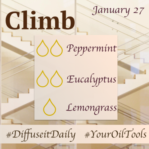 Diffuser Recipes: Week of January 24th