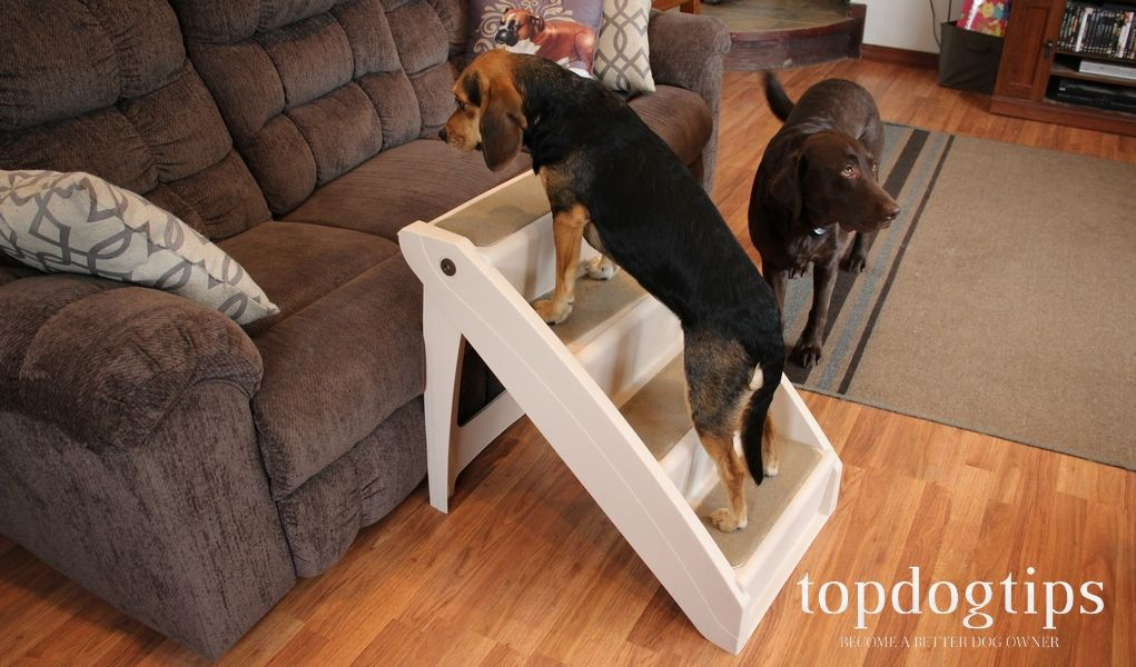 4Step Wooden Ramp Carpeted Pet Stairs with Handle4step