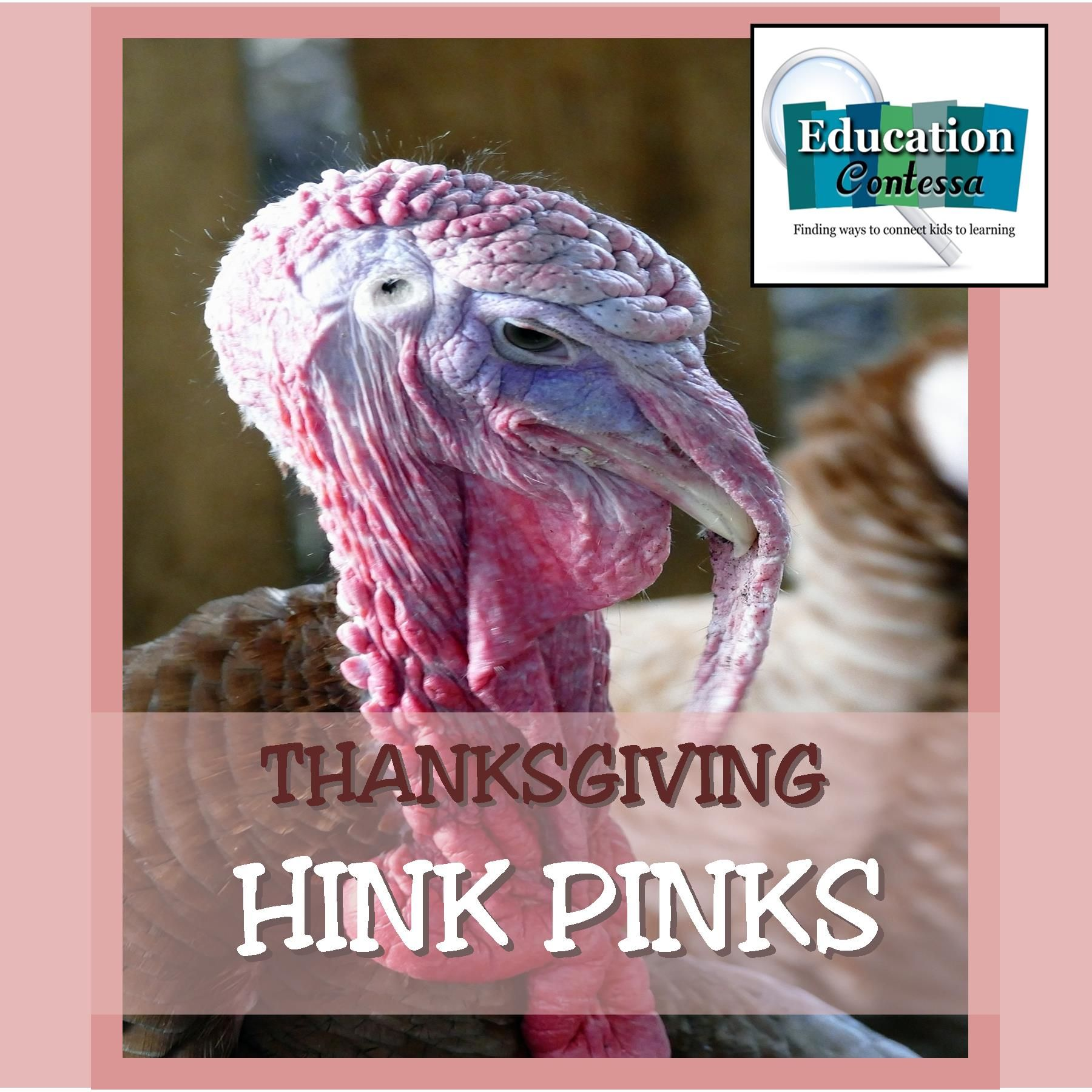 THANKSGIVING HINK PINK FREEBIE with answers – Hink Pink Worksheets