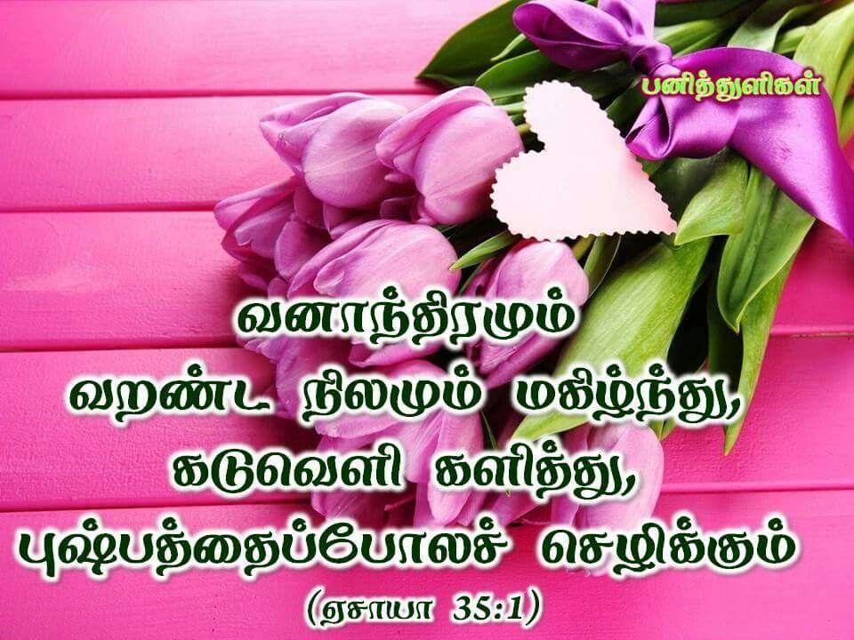 Tamil bible verse isaiah 351 , flower, pink, bouquet