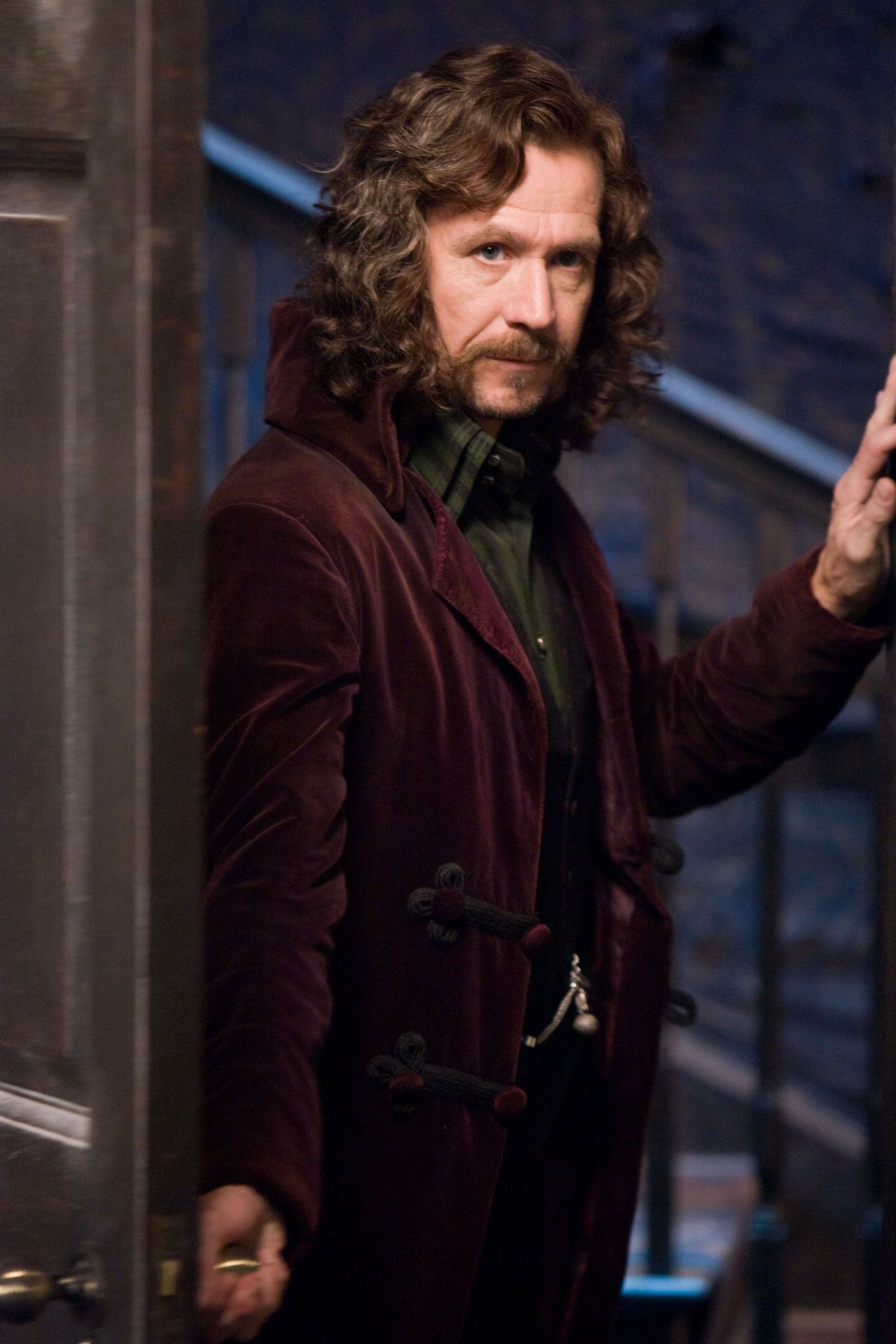Career Retrospective Gary Oldman Fandango Harry Potter Family Tree Harry Potter Aesthetic Harry Potter Characters