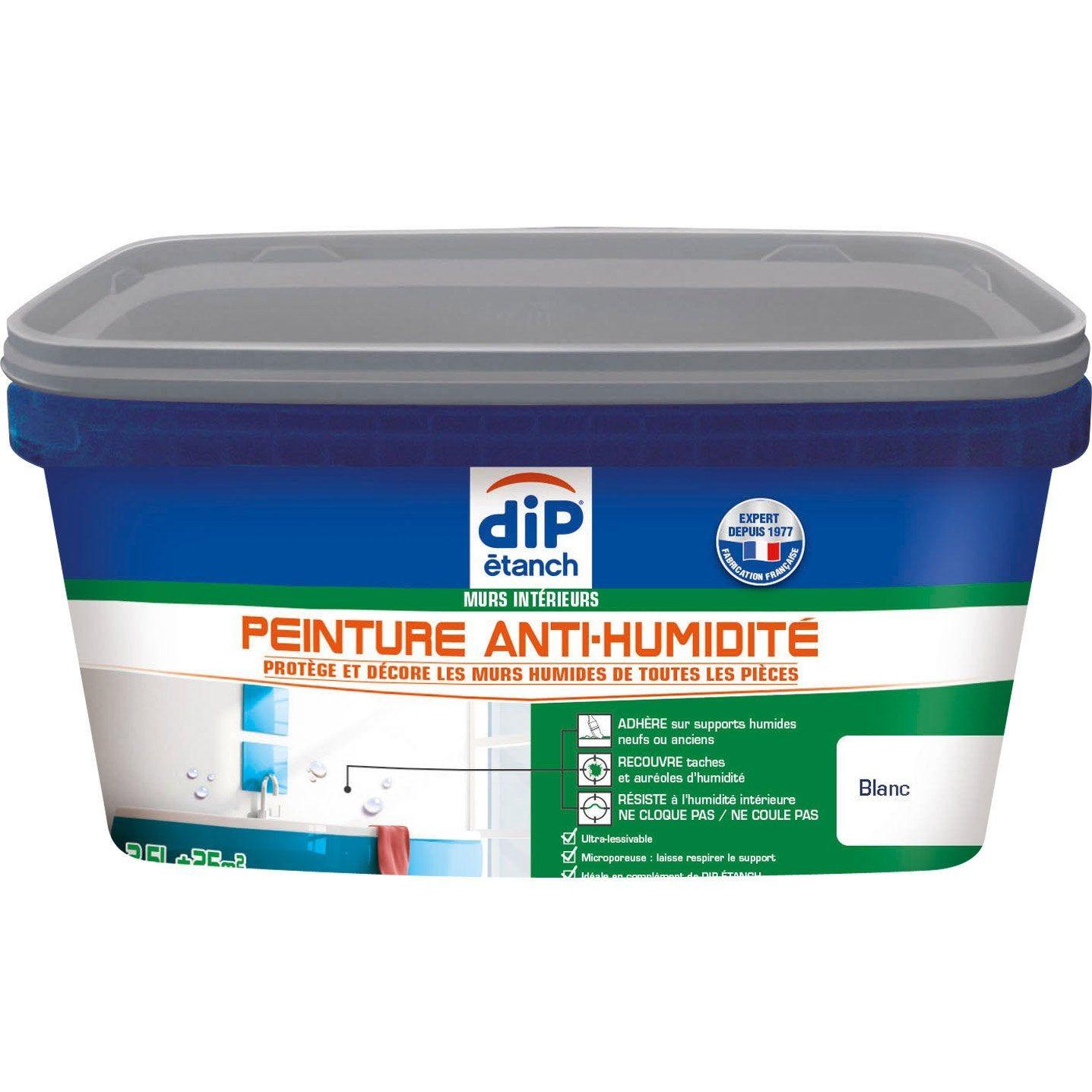 Peinture Antihumidite Dip Blanc 2 5 L Peinture Anti Moisissure Peinture Anti Humidite Et Gris Galet