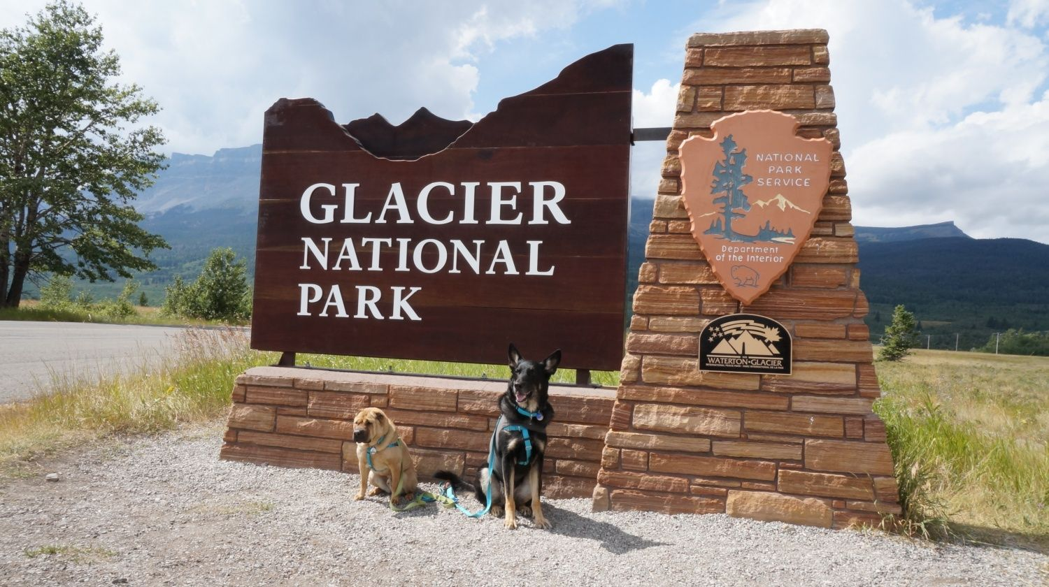 Visiting Glacier National Park With Dogs and Nearby Pet