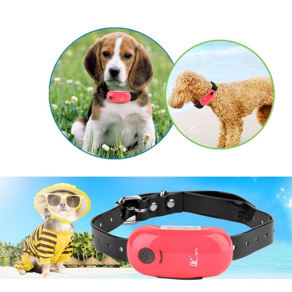 Mini Pet GPS Tracker dog Real Time Hunting Dog Outdoor