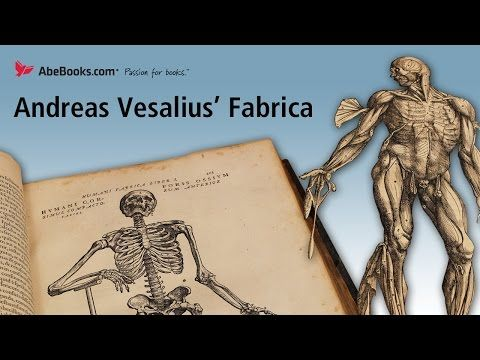 Video Andreas Vesalius Fabrica The Anatomy Of A Revolution On