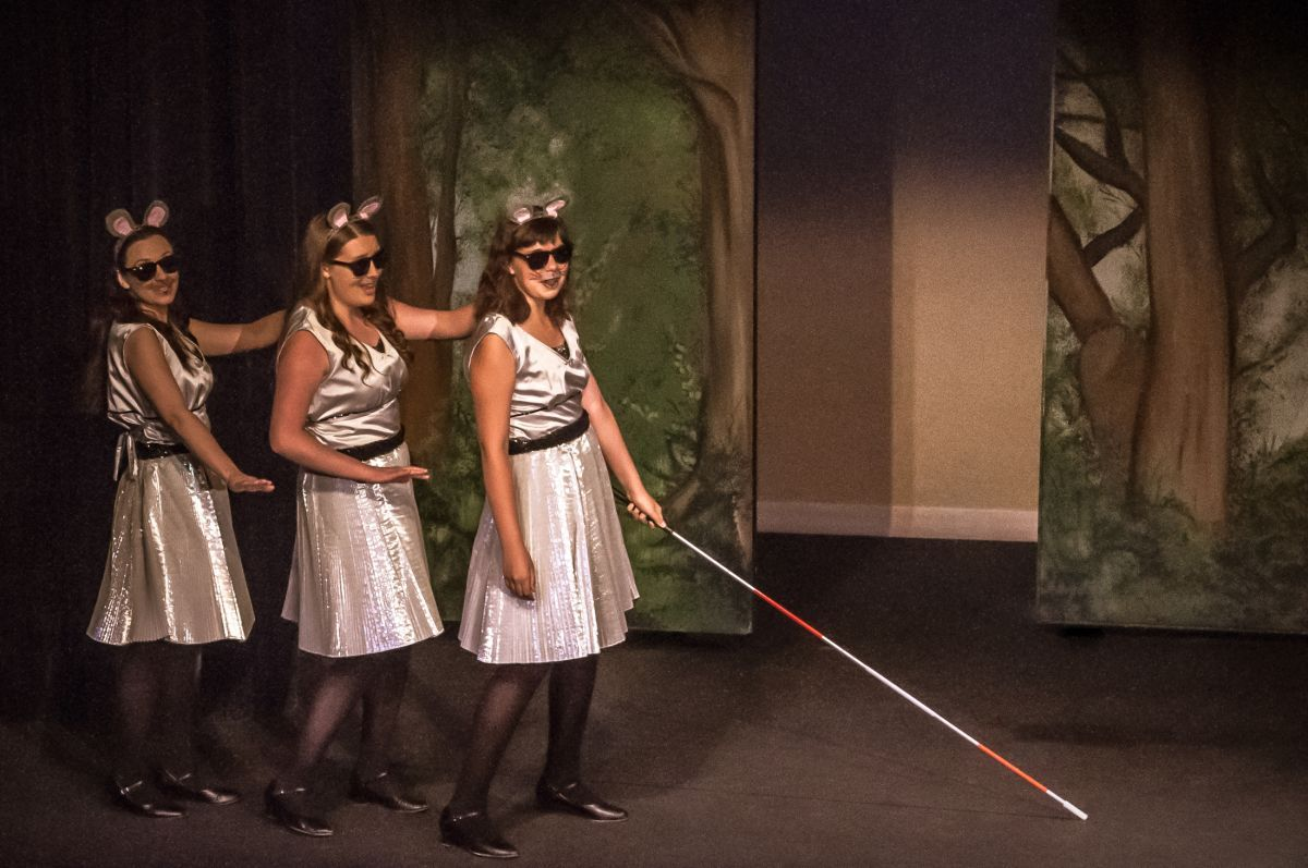 Shrek The Musical Make A Move Three Blind Mice I Like Their Dresses If The Three Blind Mice Are Casted As Female Shrek Costume Shrek Three Blind Mice