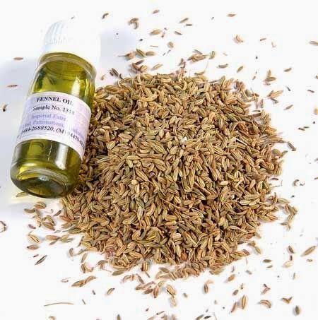 موسوعة اليمن الإخبارية L خبيرة فرنسية زيت وحبوب الشمر مفيد للانتفاخ ومدر للبن الأم Fennel Essential Oil How To Dry Basil Essential Oils