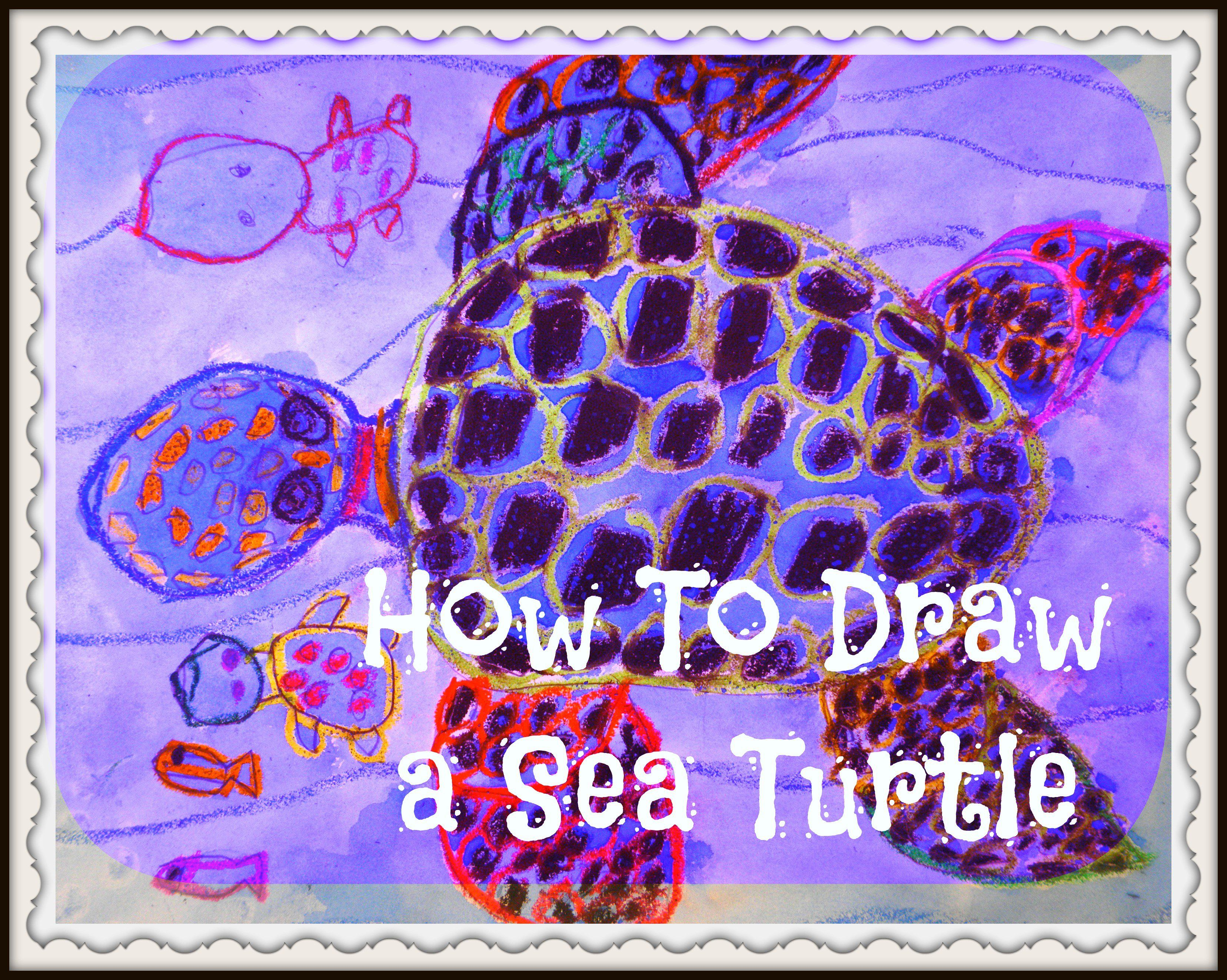 Kids Art Lesson How To Draw A Sea Turtle