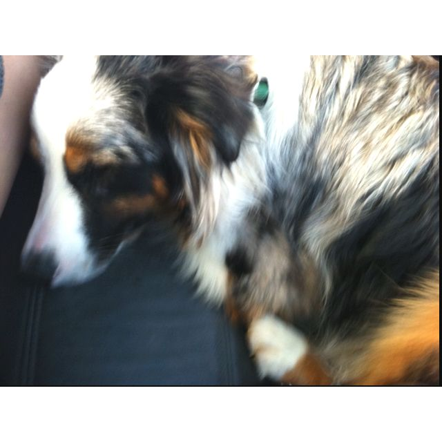 Baby boy sleeping in the car!