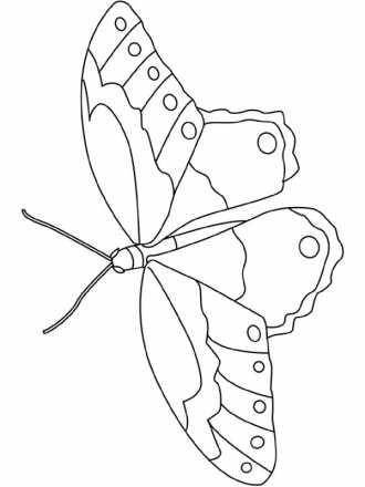 раскраска Бабочка 4 бесплатно скачать | Раскраски, Рисунки ...