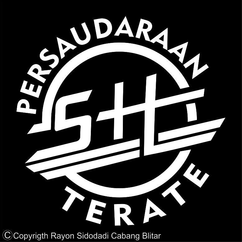 Psht Martial Art Logos Pinterest Gambar Logo