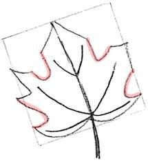 Image Result For How To Draw Easy Leaves With Images Step By