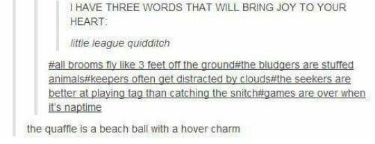 Little league quidditch