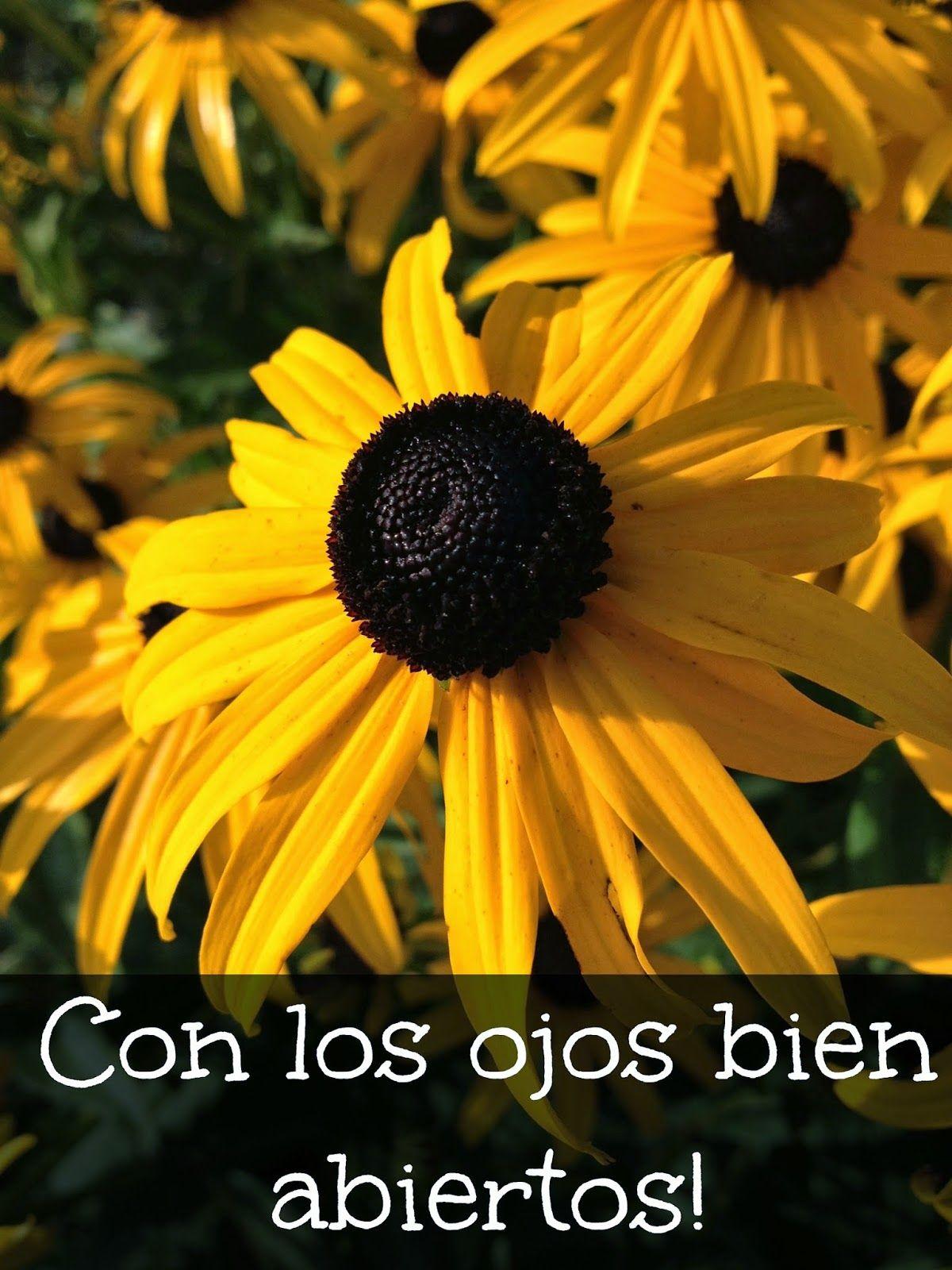 Floreciendo en Cristo: Caminando siempre...