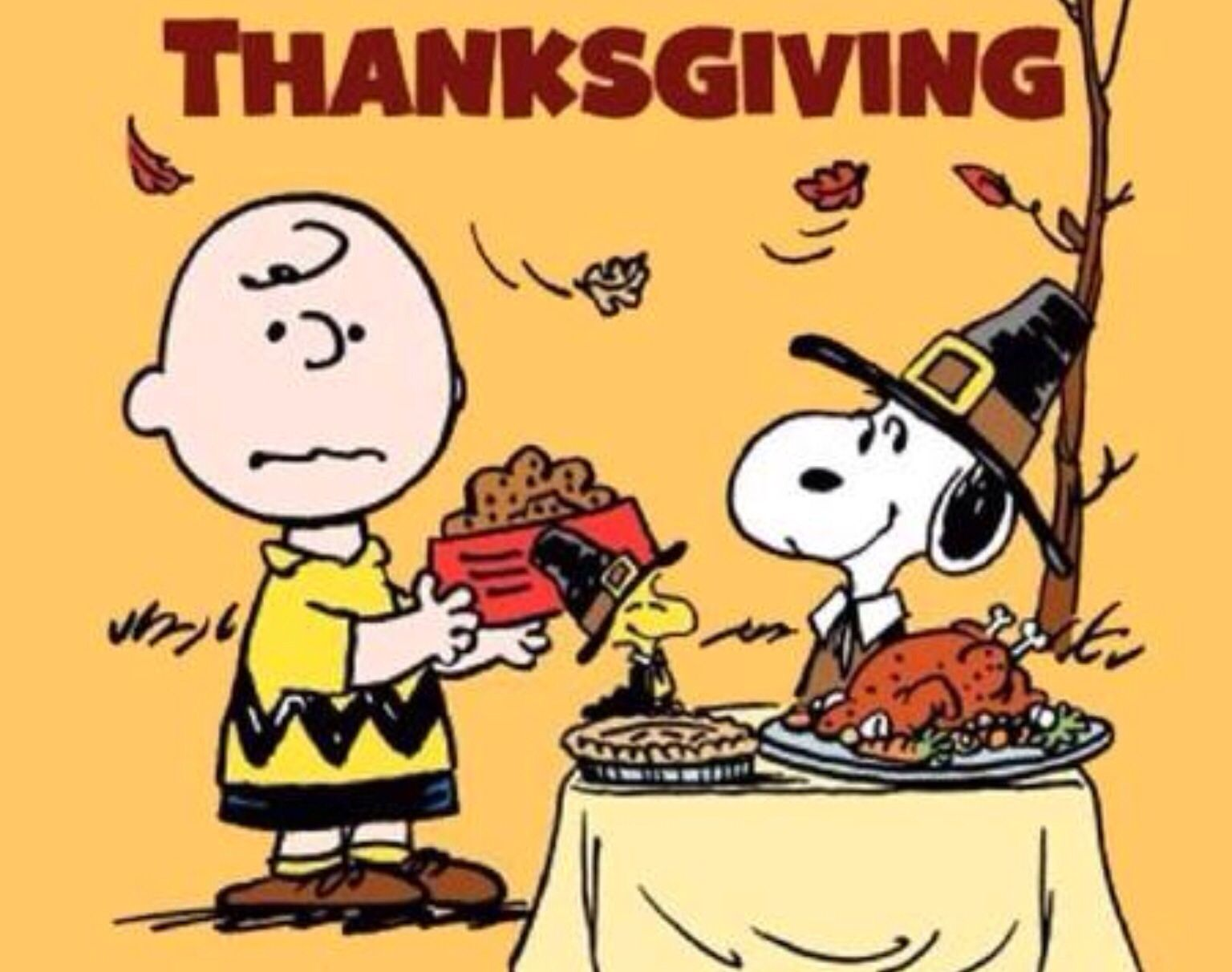 Snoopy & Charlie Brown Thanksgiving