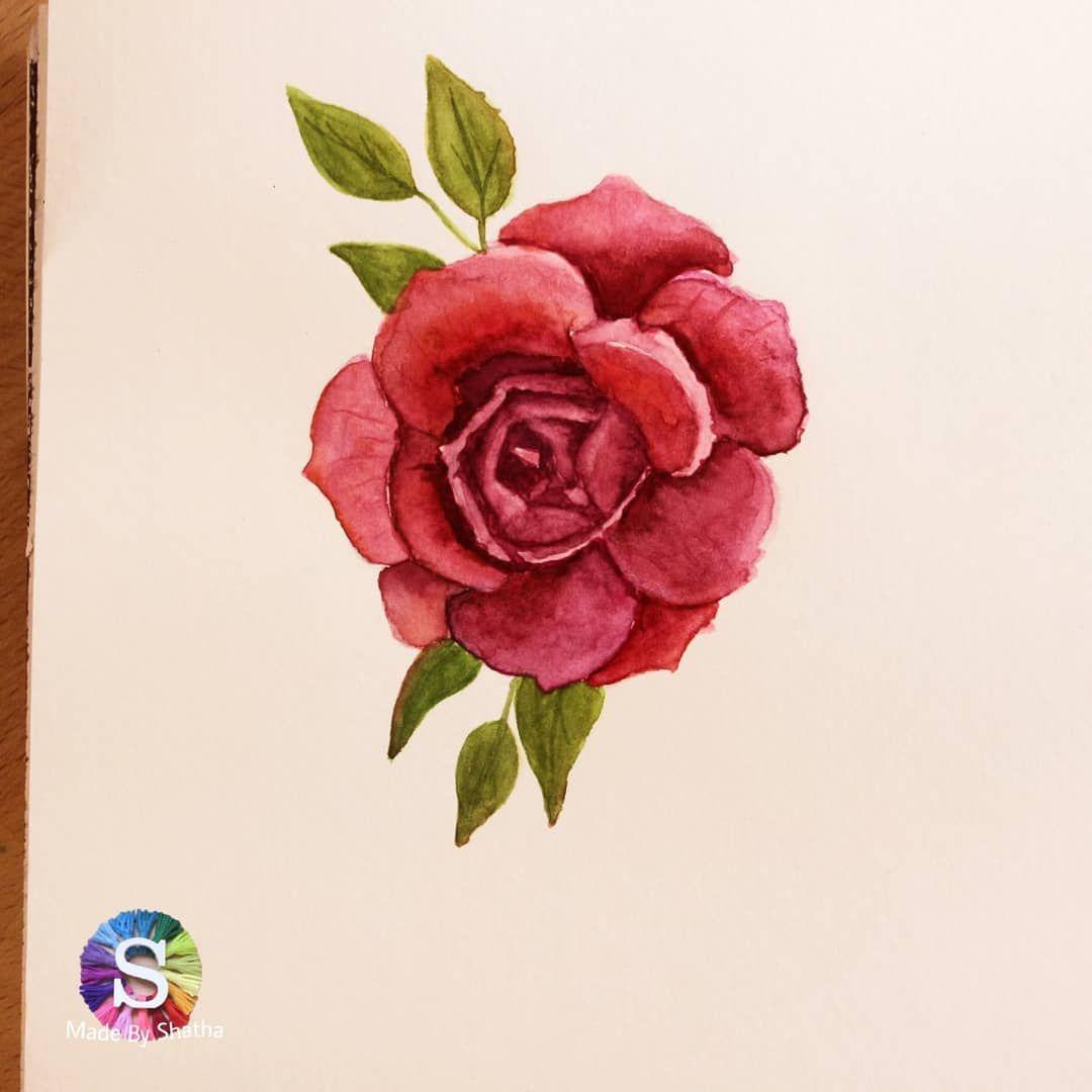 مساء الورد شذا الفرع الكوري يمسي عليكم بالخير ويقول نهاية اسبوع سعيدة لكم هممم كيف نقولها بالكوري الحمد لله بدأت تن Flower Art Flowers Art