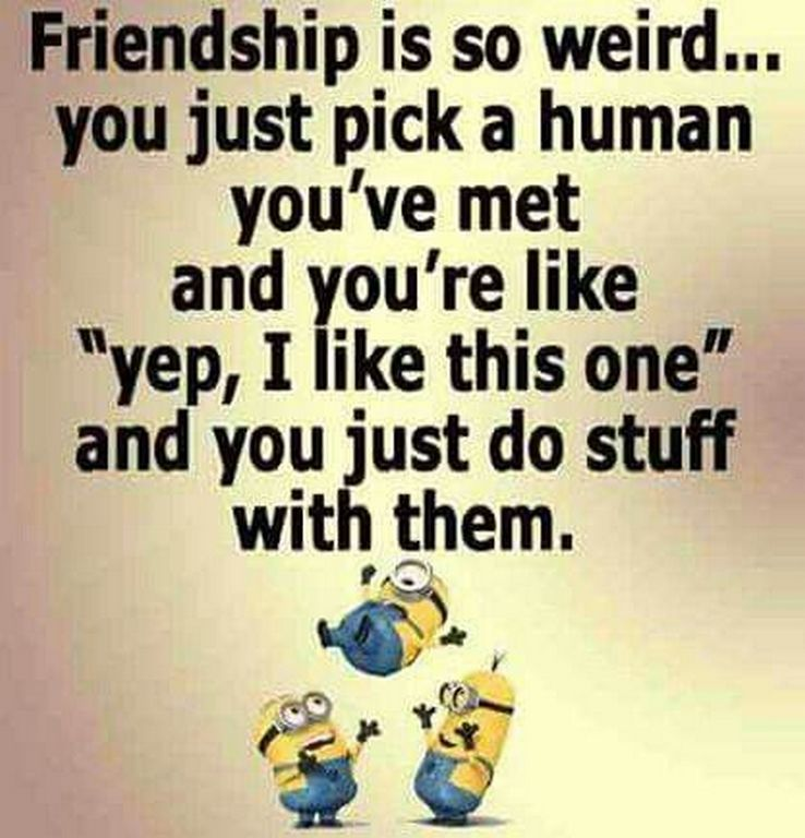New Comical Minions Images With Quotes (01:05:39 PM