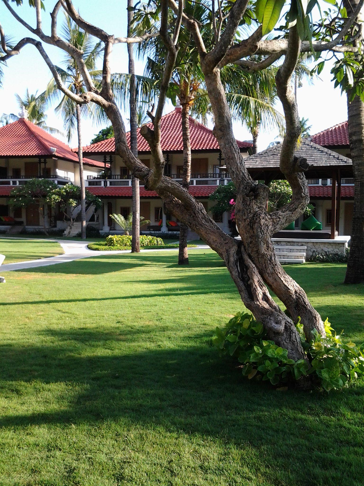 Garden in front of Junior Suite at Holiday Inn Resort Baruna Bali ...