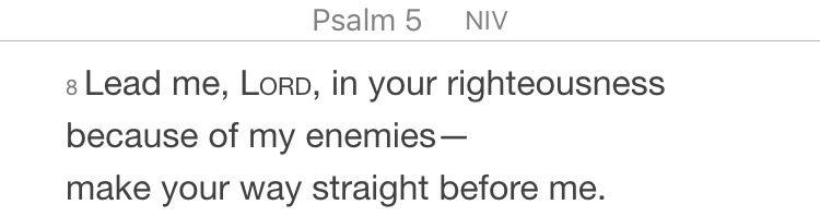 Psalm 5:8 (NIV)
